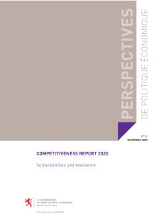 Competitiveness Report 2020: Vulnerabilities and resilience